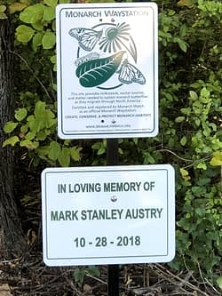 Monarch Butterfly Waystation in Memory of Mark Austry