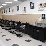 Bellus Kansas Shampoos