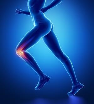 knee anatomy graphic
