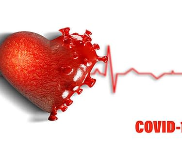 COVID-19 Coronavirus And Myocarditis Heart 3D Rendering