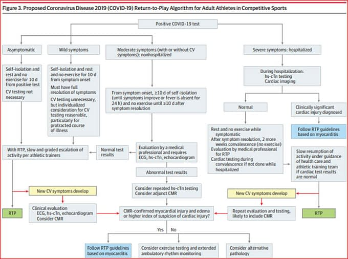 Chart showing COVID Return-To- Play Algorithm for Adult Athletes Diagram