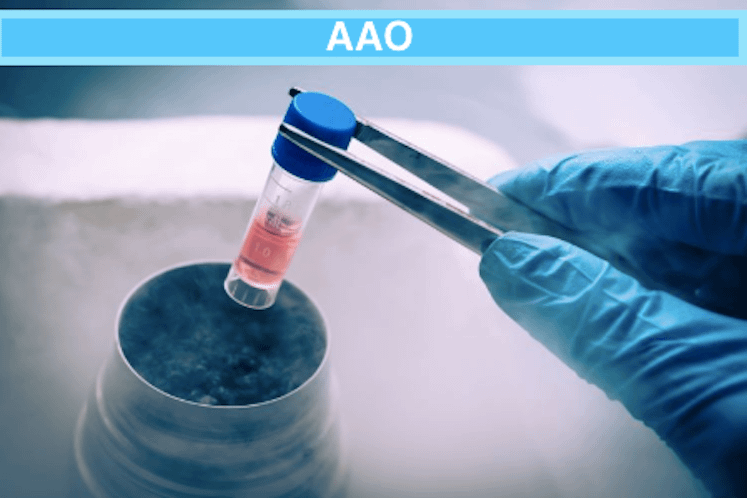 AAO 2019: Positive Efficacy Data Presented for Trial of hRPC Stem Cell Therapy