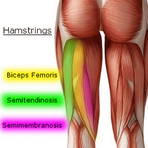 Knee Pain Caused by a Hamstring Injury - Wayne, NJ - High