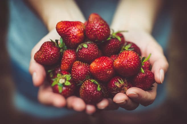 Hands holding strawberries.