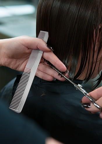 professional cosmetology haircut