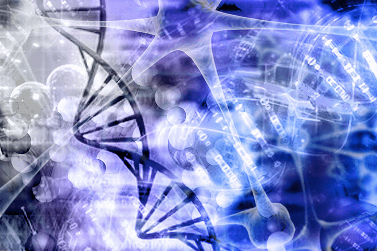 Next-Generation Sequencing Finds Theoretically Traceable Alterations in Rare and Ultra Rare Cancers