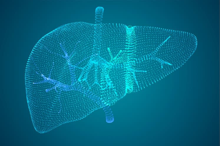 Vector abstract background of dots and glows. human liver.