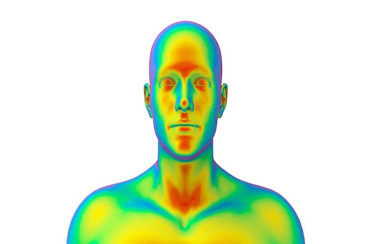 Medical thermal imaging of human male head, front view, realistic 3D Illustration, isolated on the white background.