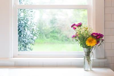 Vase of flowers in front of window