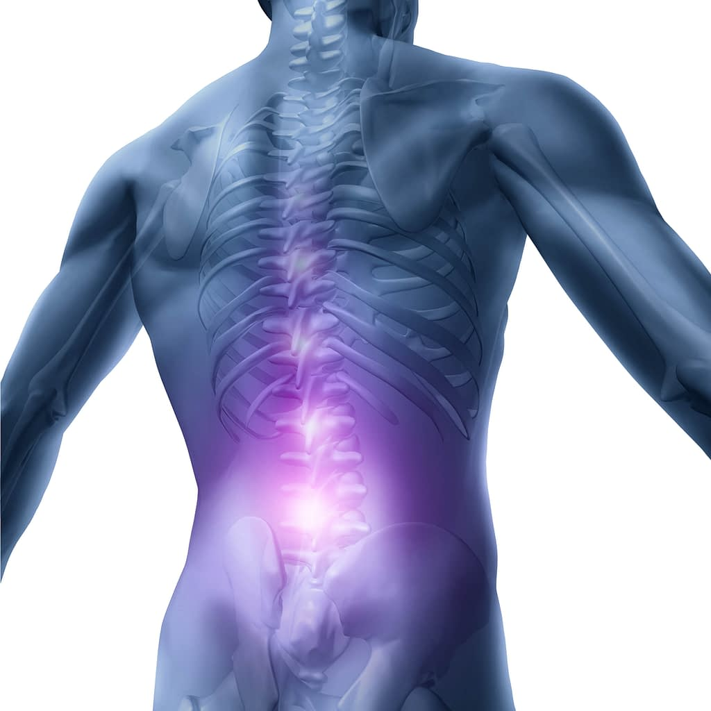 Chronic back pain is becoming an epidemic in America. This image highlights the area of back pain most individuals experience.