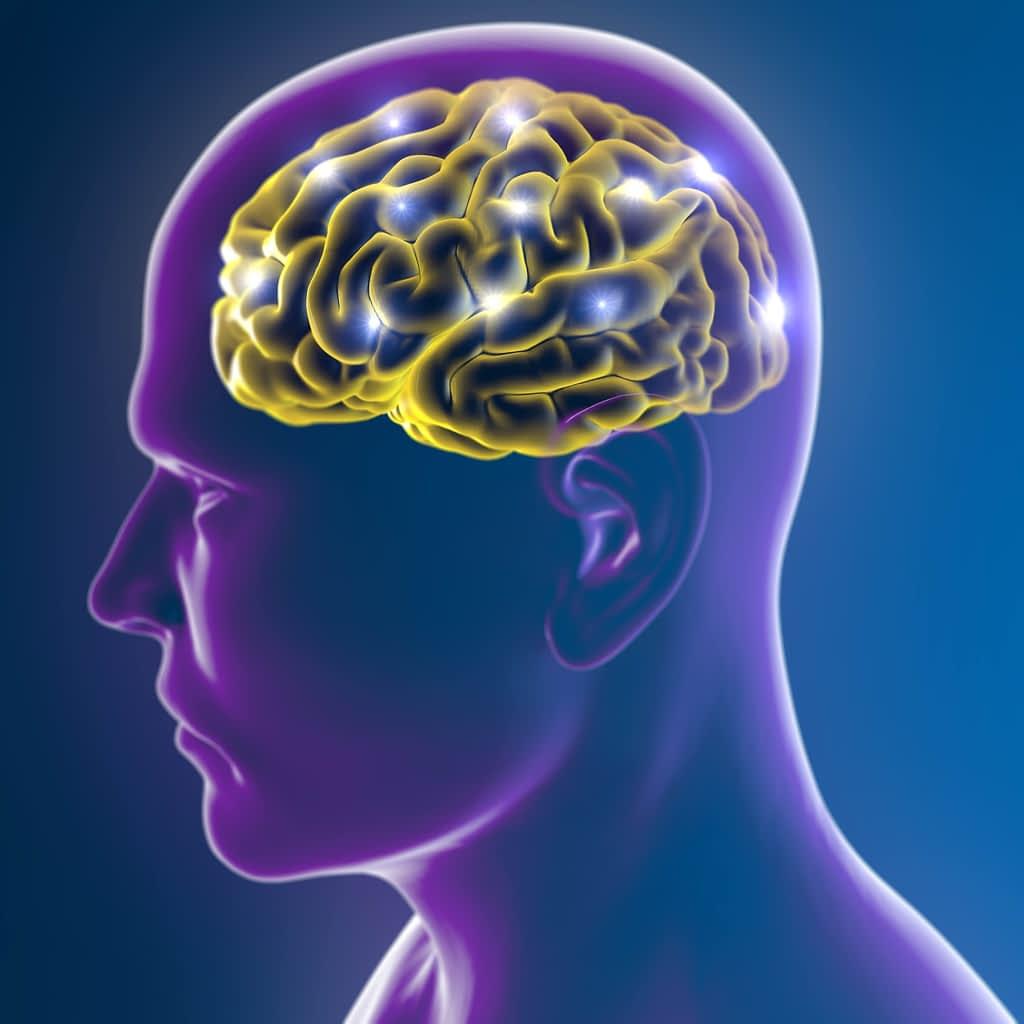 Representation of brain activity in human head